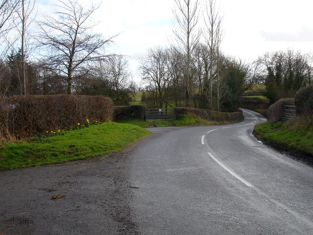 The road past The Ffridd