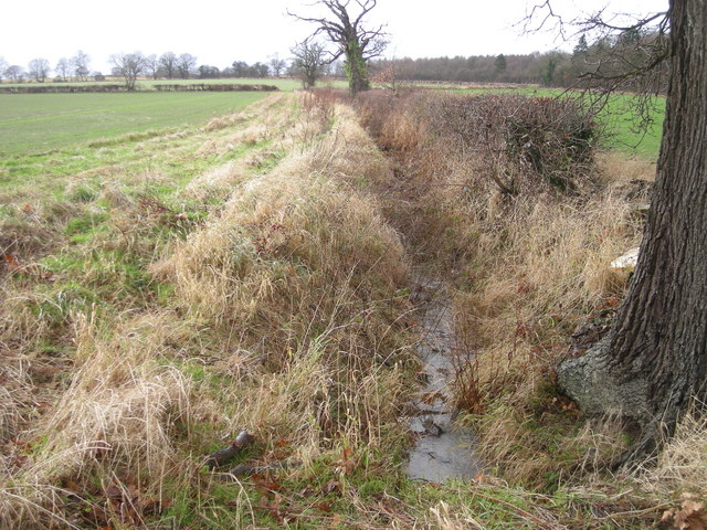 Ditch beside 'Right of Way' to disused airfield.