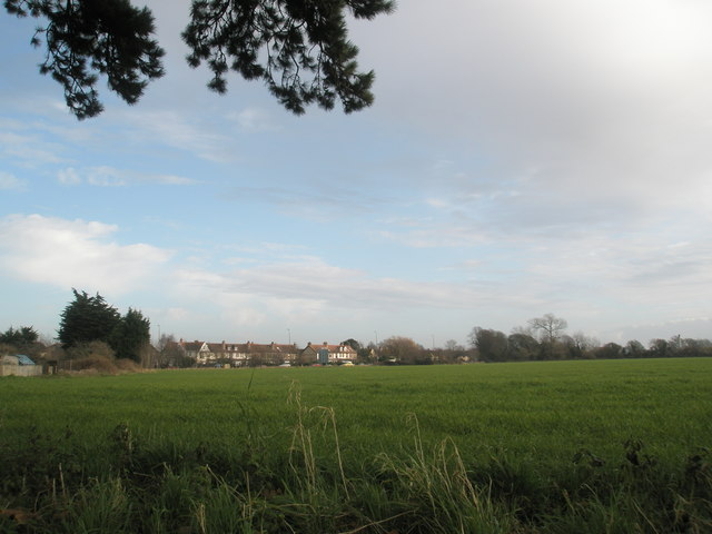 Looking from Delling Lane across field to the main road