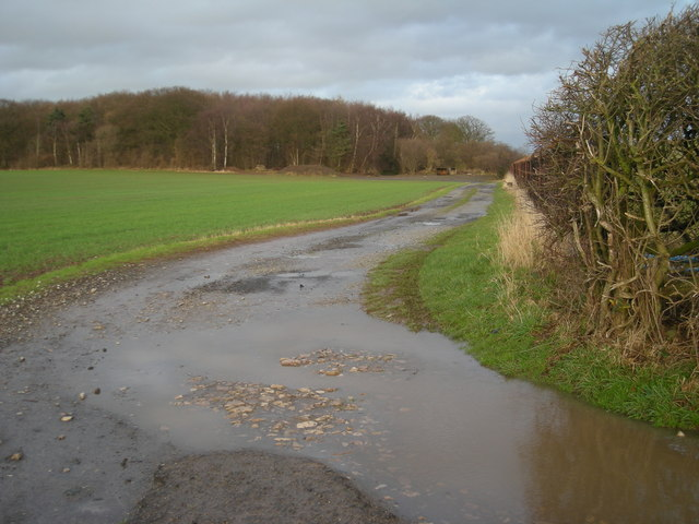 Track to Betton Coppice.