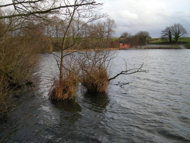 North shore of Betton Pool.