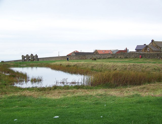 Fish pond, Whitby Abbey