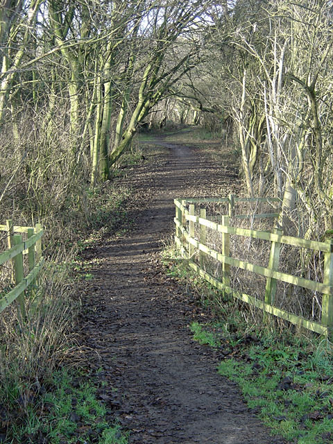 Path in Colwick Country Park