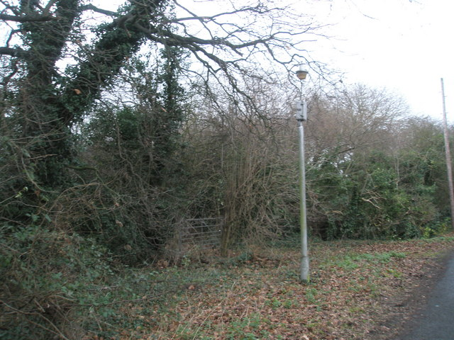 Lamppost in Cot Lane