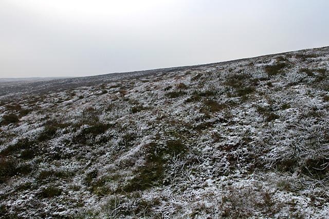 Frozen fell