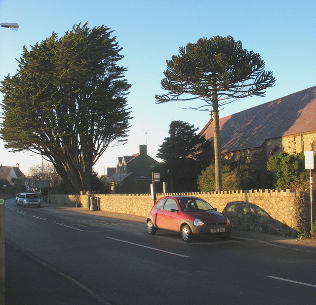 Churchyard trees at Pen y Bryn