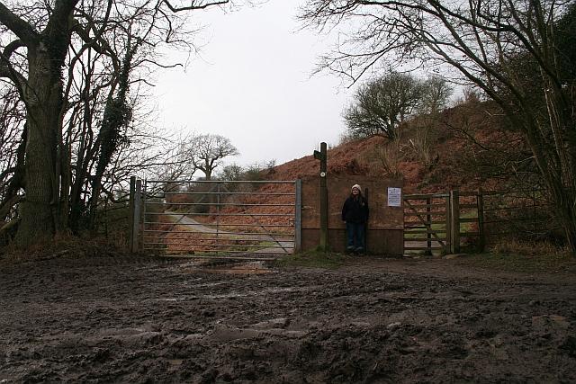 Deer Gate into Eastnor Park