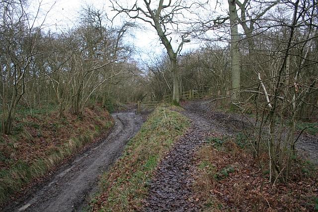 Gateway to Swinyard Hill
