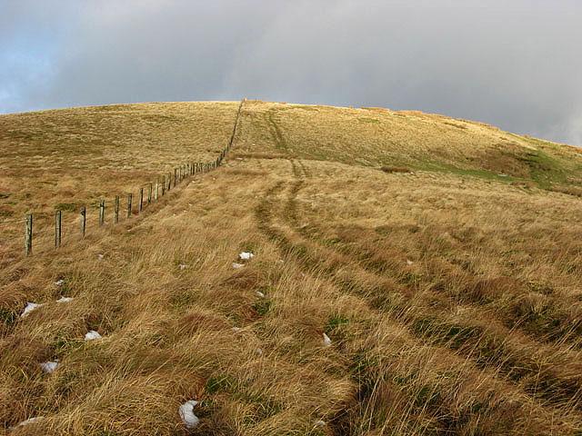 Thorniecleuch Hill