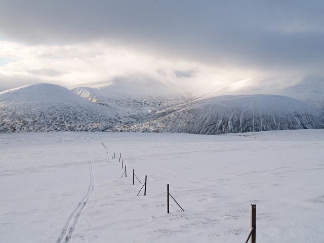 Fence posts and ski track, Meall a' Chaorainn