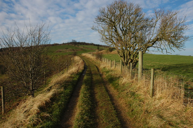 Track above Coldwell Bottom