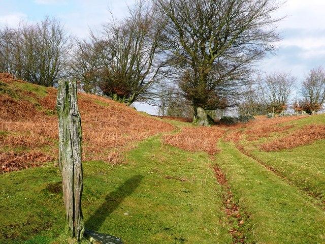 Footpath to Rhyswg-ganol