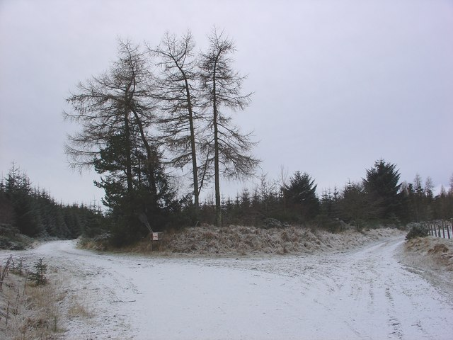 Junction of track from Knockancurin