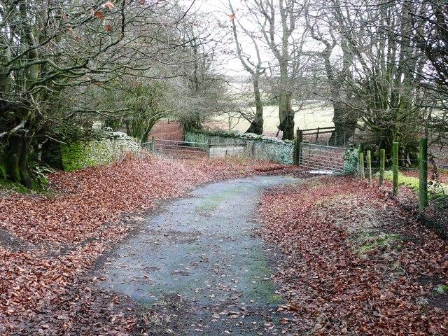 Parish Road at Rhyswg-ganol