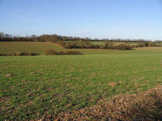 Arable land near Barfrestone