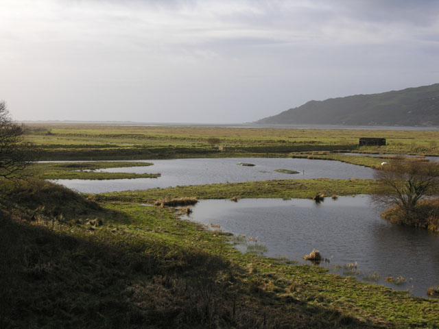 Ponds at RSPB Ynyshir
