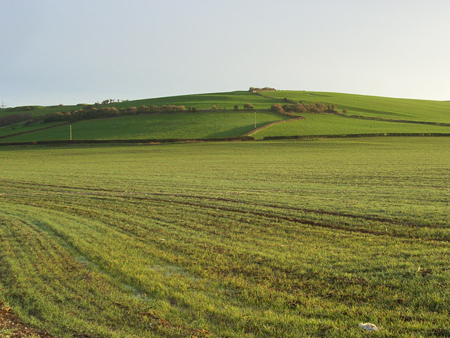Farmland, Bincombe