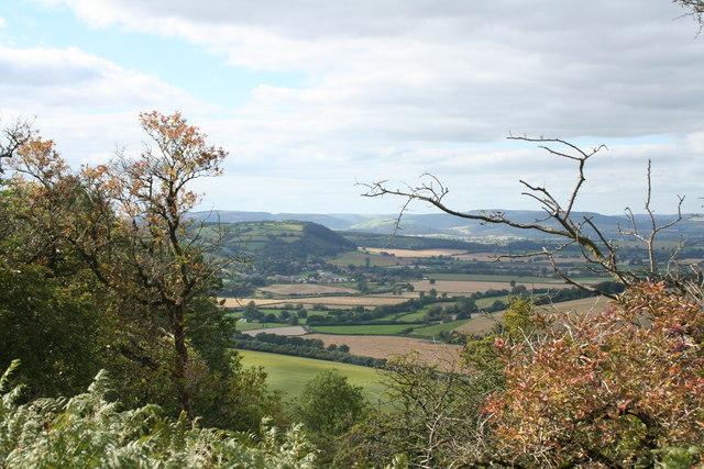 Yatton View