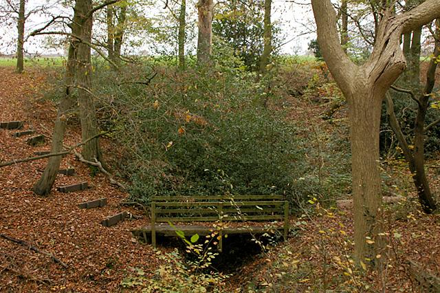 Footbridge in Beeston Wood