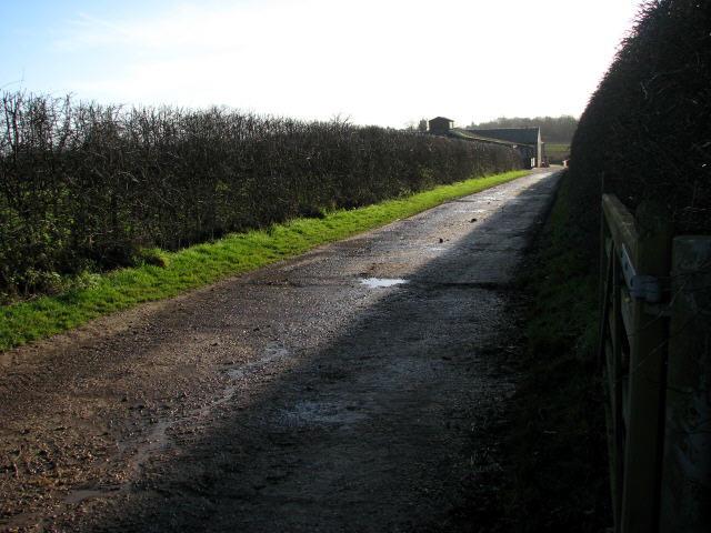 Driveway to Flash Farm