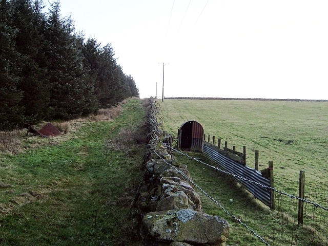Sheep enclosure and hut