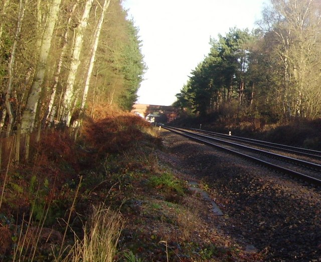 Railway line between Sandhurst and Crowthorne