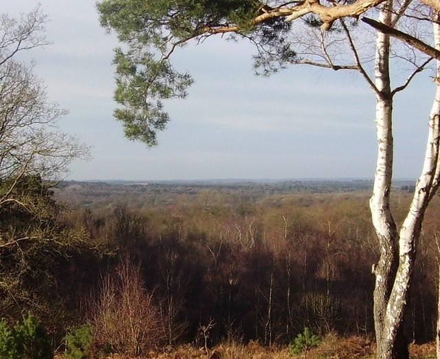 View from Finchampstead Ridges