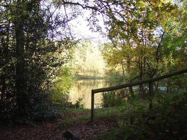 Wyndham's Pond on Yateley Common