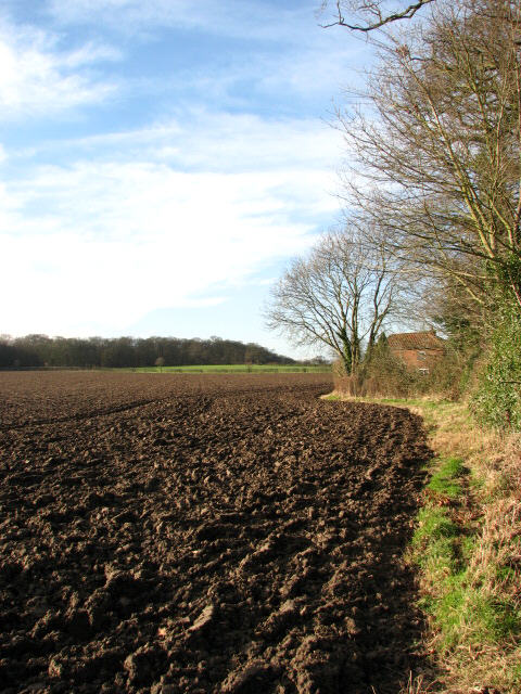 Ploughed field in January sunshine