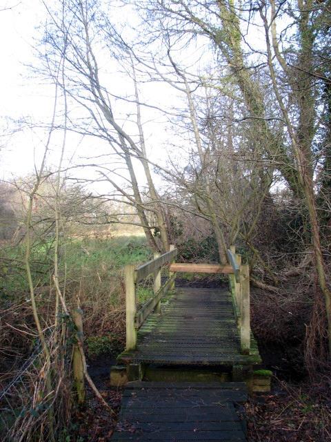Footbridge at the end of boardwalk
