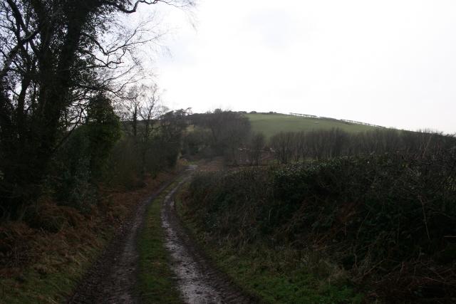 Bridleway to Mynydd Bach