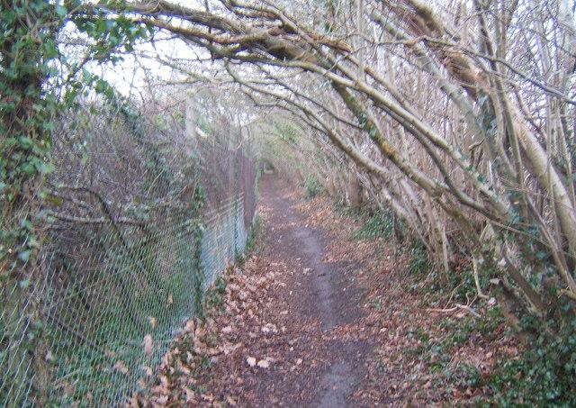 Path at chalk cliff top near Needham Market