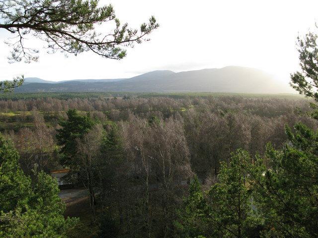 View from Fairy Hill woods