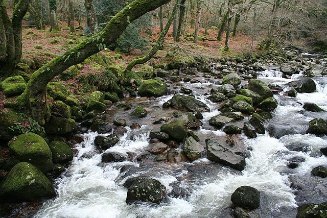 Meavy: river Plym