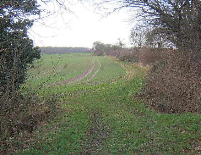 Footpath towards Tarston Hall