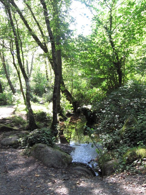 Small pool near to Salters Pool on the River Dart