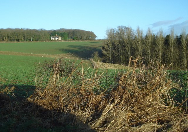 View to Doctors Coppice