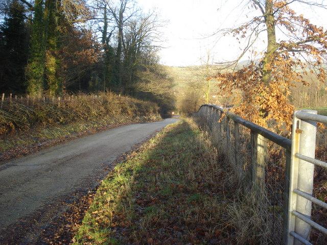 Lane to Clungunford