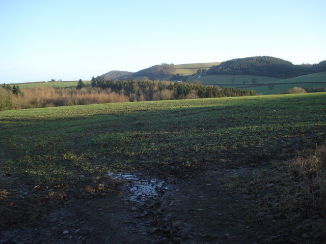 View to May Hill and Goat Hill