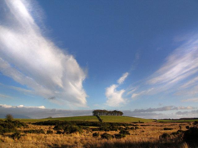 Moorland near the Ballochrae Burn