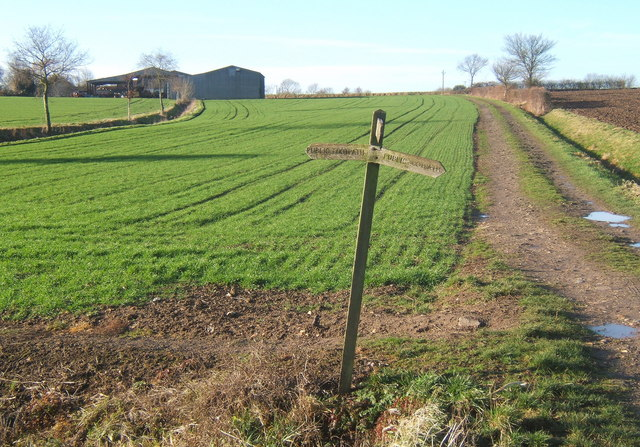 Footpath crossroads, looking towards Overhall Farm