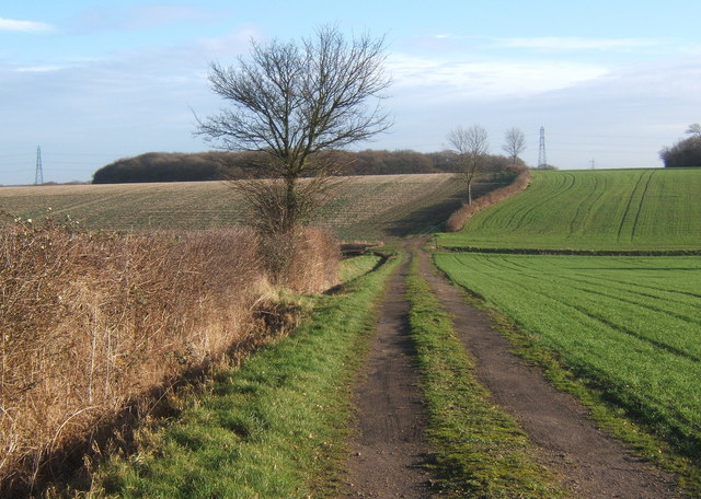 Track east from Overhall Farm, looking to the upslope in the next square