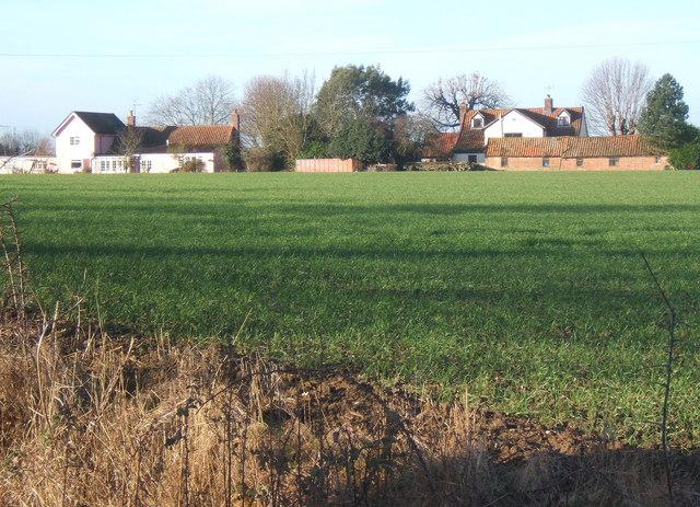 Across fields to Barking Tye from Overhall Farm