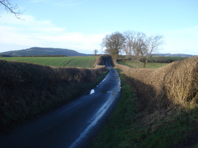 Lane to Three Ashes