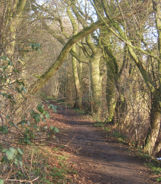 The Causeway, a path between Needham Market and Barking church