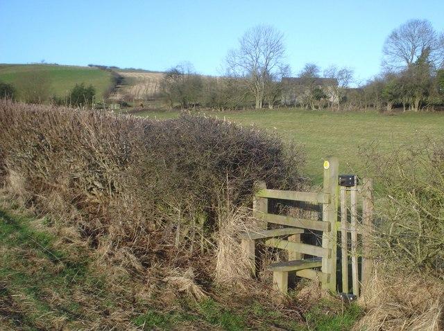 Stile and dog gate near New House