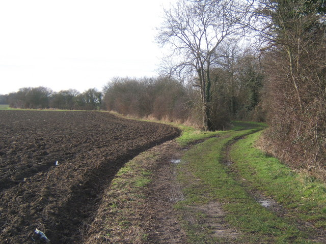 Fields by the Causeway path