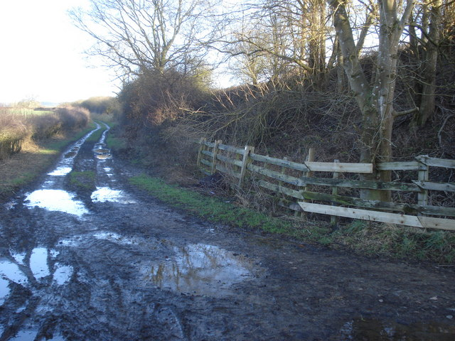 Bridleway to Coston Manor