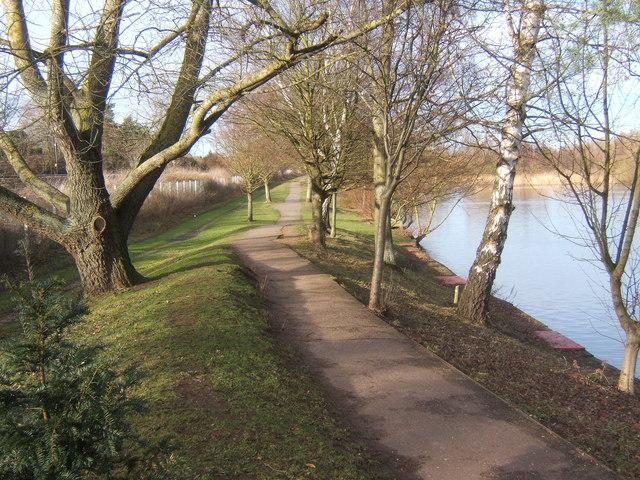 Path beside Needham Lake