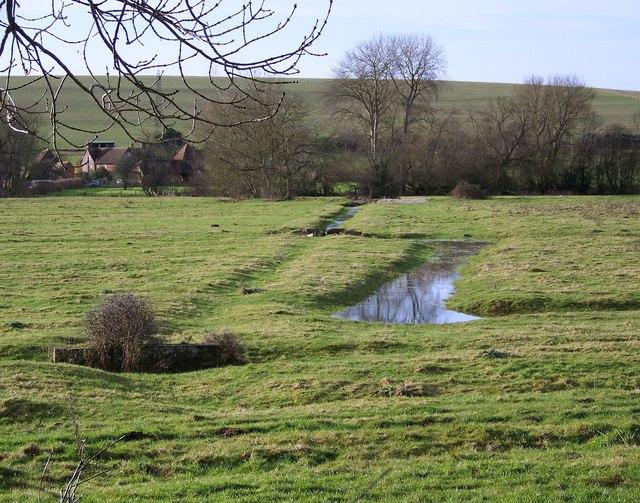 Meadows near Odstock